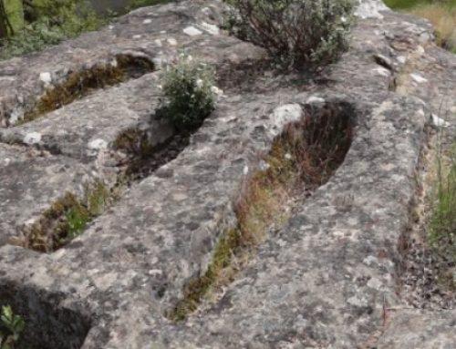 El óbolo de los difuntos: rito funerario en la Castilla medieval